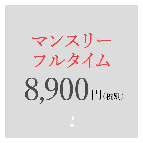 マンスリーフルタイム 8,900円
